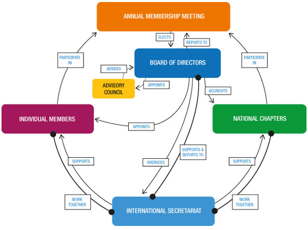 Organigramme of Transparency International movement